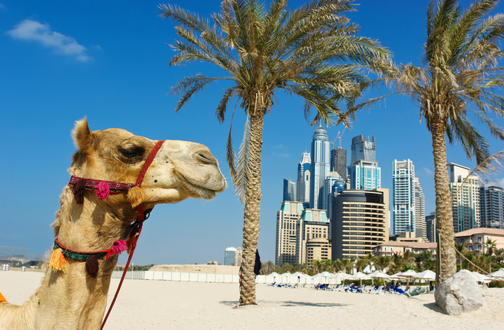 Top 5 places to visit in Dubai